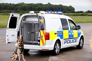 Volkswagen canine Caddy conversion