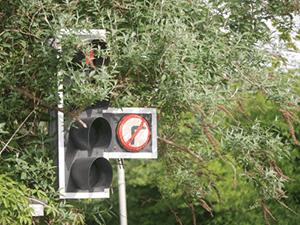 concealed signage