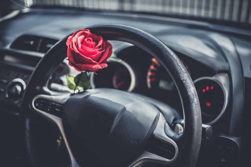 Interior of vehicle, red rose sits on the steering wheel